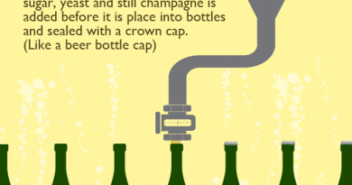 How-Champagne-is-Made1000